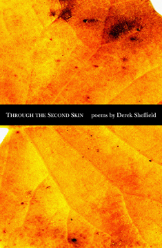 Through the Second Skin cover image